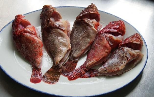 Receta: Lomo de kabrarroka asado con contrastes de berza, caldo de parmesano y arroz frito