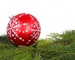 Noticia: Zorionak, Feliz Navidad