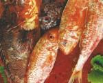 Receta: Lomos de salmonetes con risotto de mojojones