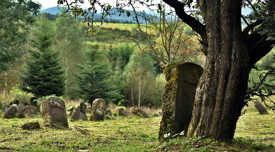 Lapidas cementerio